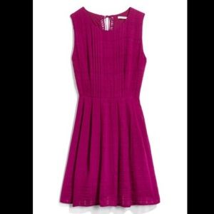 Collective Concepts Magenta Dress